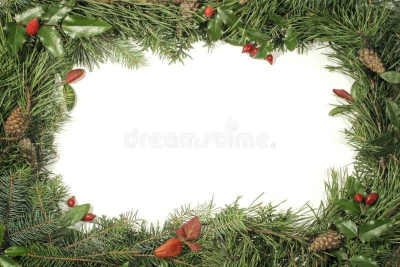 Download Greenery рамок украшений стоковое изображение. изображение насчитывающей рамка - 483099