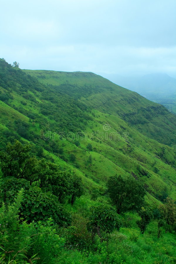 Free Greenery On Mount Ajinkyatara Stock Photos - 6844373