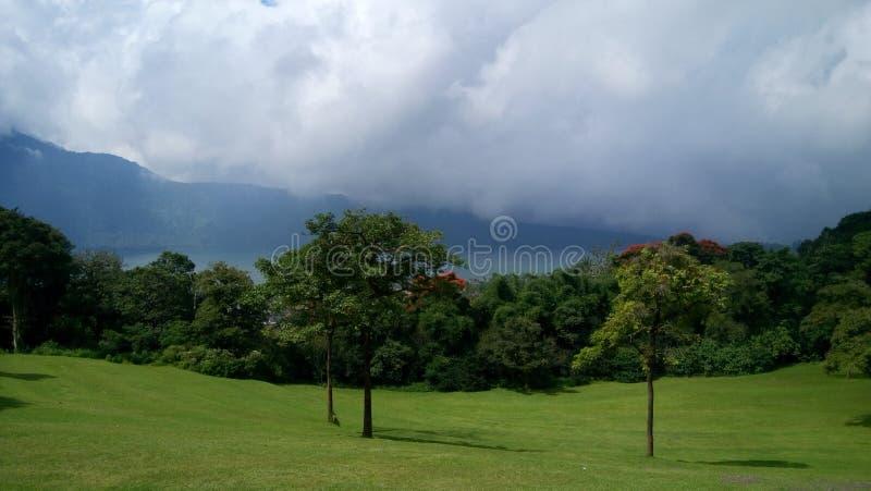 greenfield stockbild