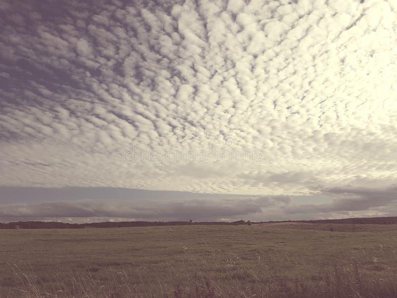 Greenfield del campo del paesaggio della natura delle nuvole immagine stock
