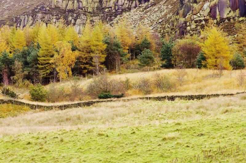 Greenfield máximo do reservatório de Dovestone do distrito, Inglaterra, Reino Unido fotos de stock royalty free
