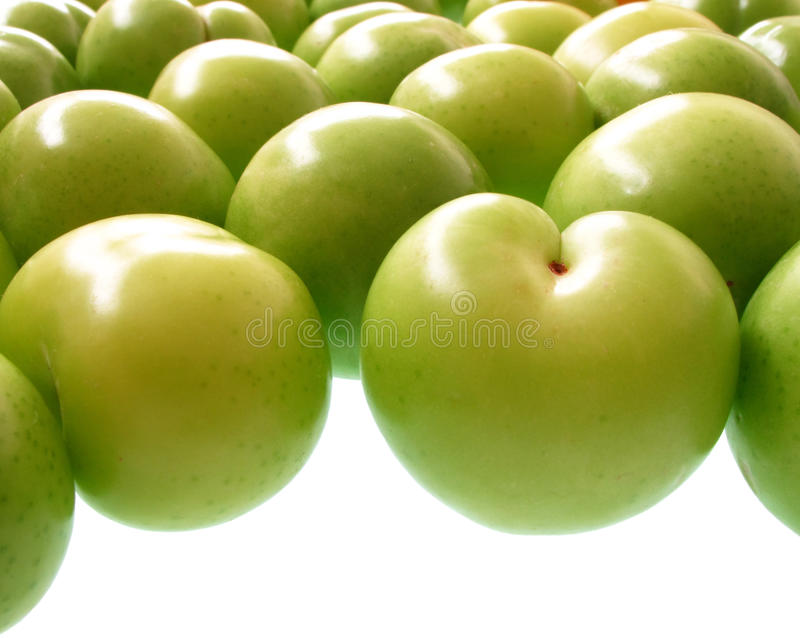 greengages arkivfoto