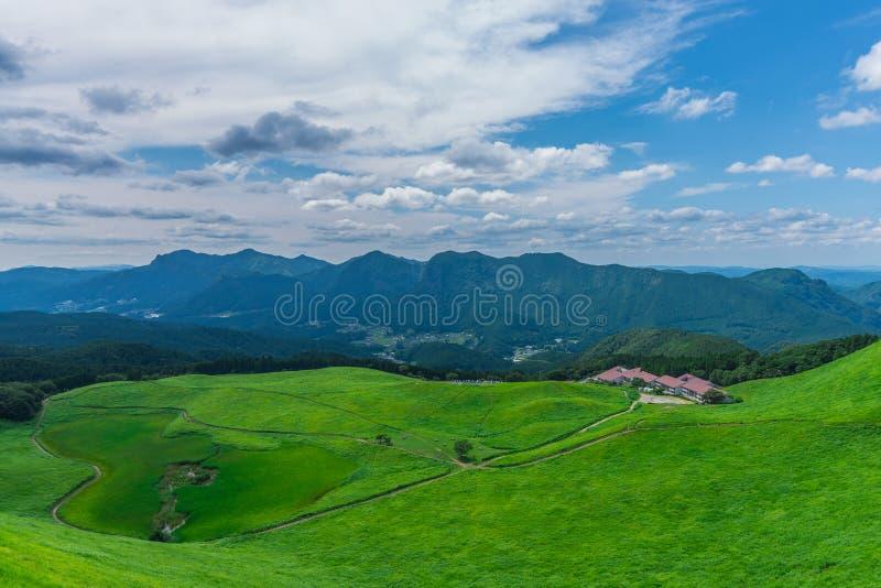 Greengrass no platô de Soni, Nara Prefecture, Japão imagem de stock royalty free