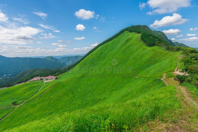 Greengrass no platô de Soni, Nara Prefecture, Japão imagens de stock royalty free