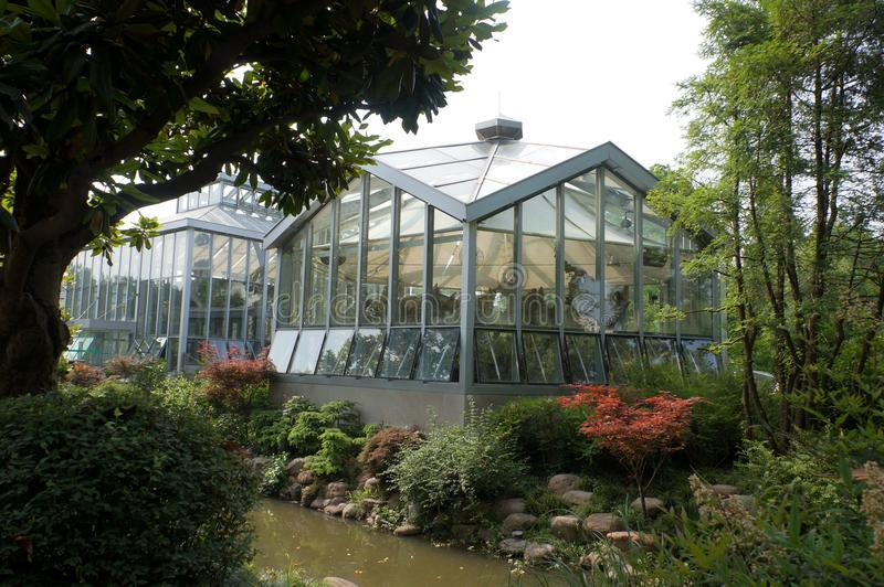 greenhouse photos libres de droits