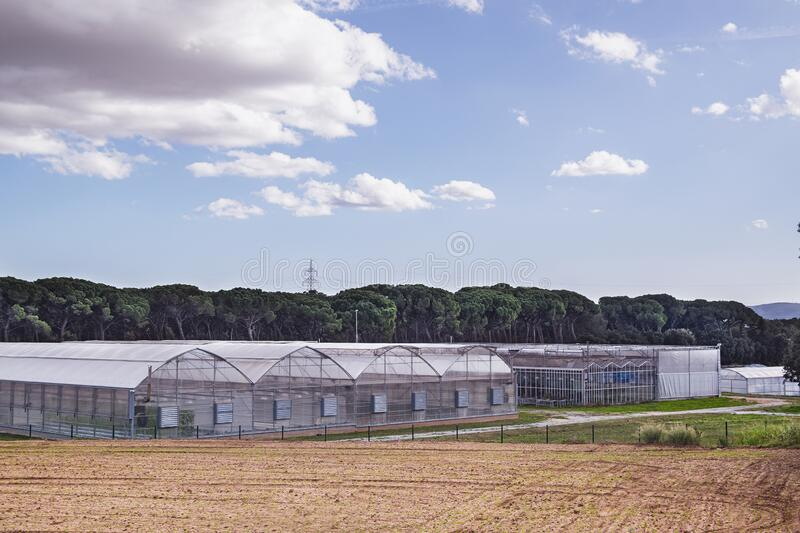 Greenhouse and agriculure research next to cultivated field for food production. Day time and blue sky with empty copy space. For Editor`s text stock photos