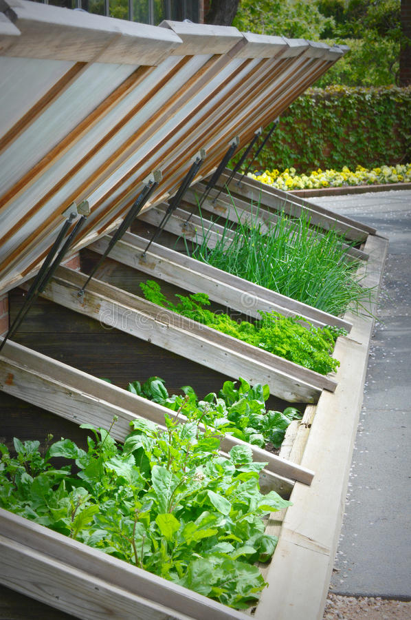 Greenhouse Boxes royalty free stock photography