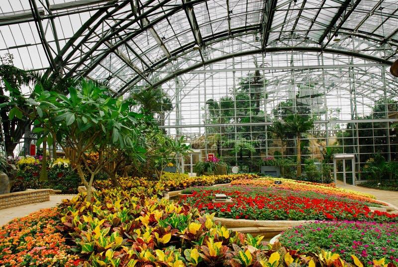 Greenhouse_C lizenzfreie stockfotografie