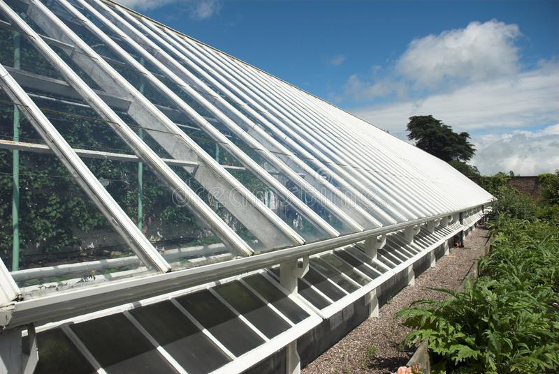 Download Greenhouse Detail stock photo. Image of horticulture - 22790784