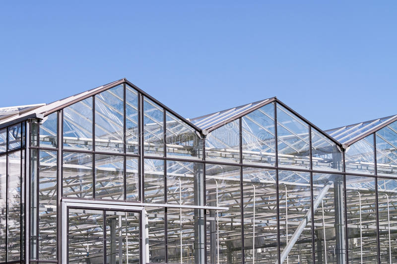Greenhouse exterior with blue sky stock image