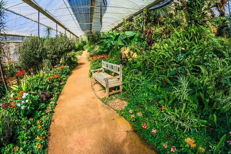 Greenhouse Garden stock photography