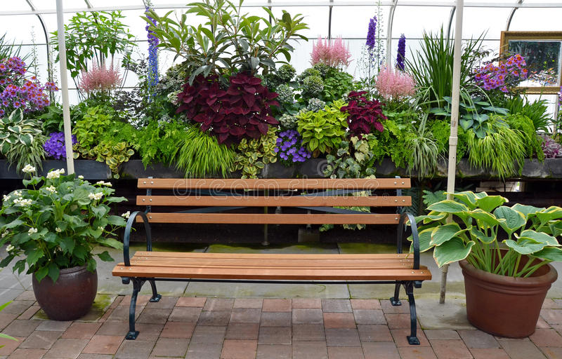 Greenhouse garden bench. Wooden bench in colorful lush garden greenhouse stock photo