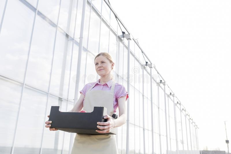 Low angle view of woman carrying crate outside greenhouse against sky stock photography
