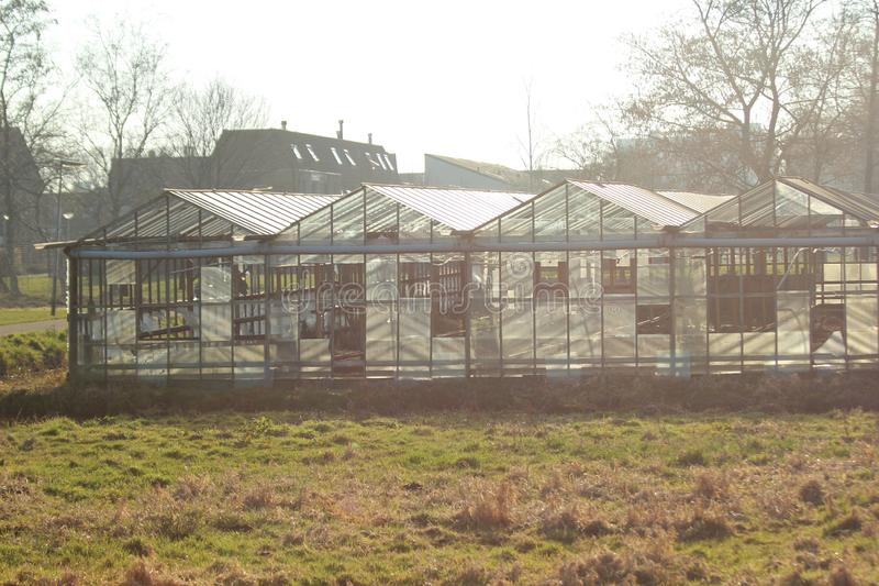 Greenhouse in Nieuwerkerk aan den Ijssel in the Netherlands with broken windows and waiting to be demolished royalty free stock images