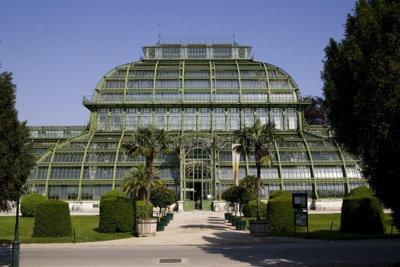 Download Greenhouse - Palmenhaus Schönbrunn Stock Image - Image: 14699767