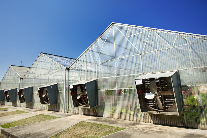Greenhouse under blue sky royalty free stock image