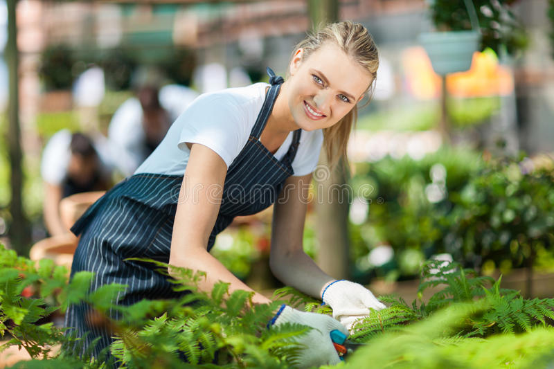 Download Greenhouse worker stock image. Image of planting, girl - 27064143