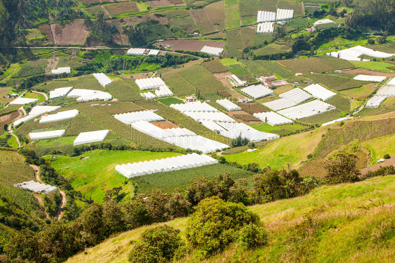 Greenhouses In Andes royalty free stock image