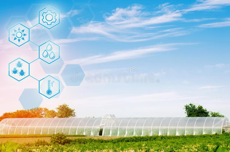 Greenhouses in the field for seedlings of crops, fruits, vegetables, lending to farmers, farmlands, agriculture, rural areas, agro. Industrial complex. winter stock photo