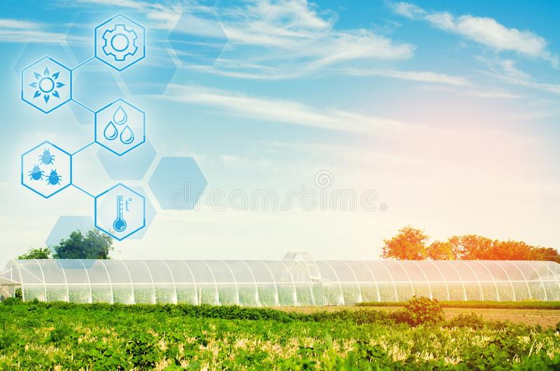Greenhouses in the field for seedlings of crops, fruits, vegetables, lending to farmers, farmlands, agriculture, rural areas, agro. Industrial complex. winter stock image