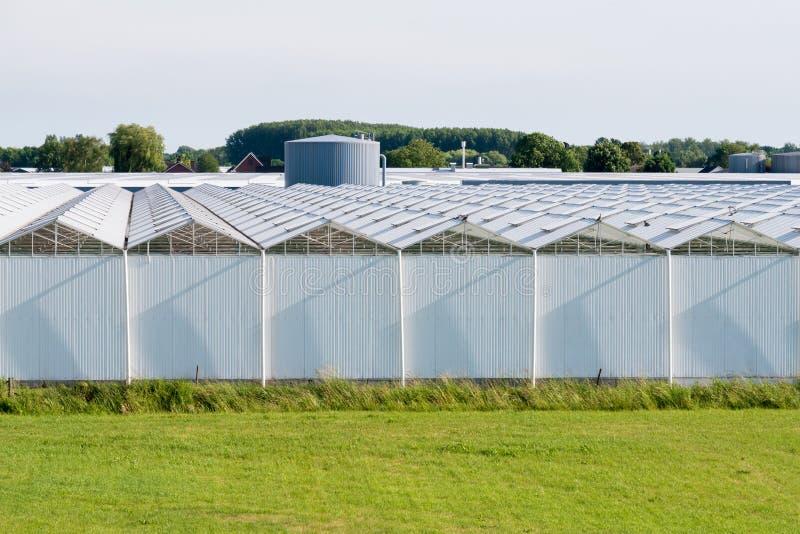 Greenhouses of flower nursery in polder of Bommelerwaard, Nether. Rows of glasshouses of flower farm in polder near Nieuwaal, Bommelerwaard, Gelderland royalty free stock image