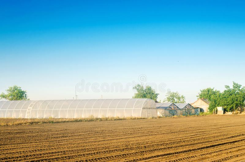 Greenhouses for growing vegetables and fruits in the field. Farming Agriculture Farmland. Agro-industrial complex. Lending to. Farmers. Selective focus stock photography