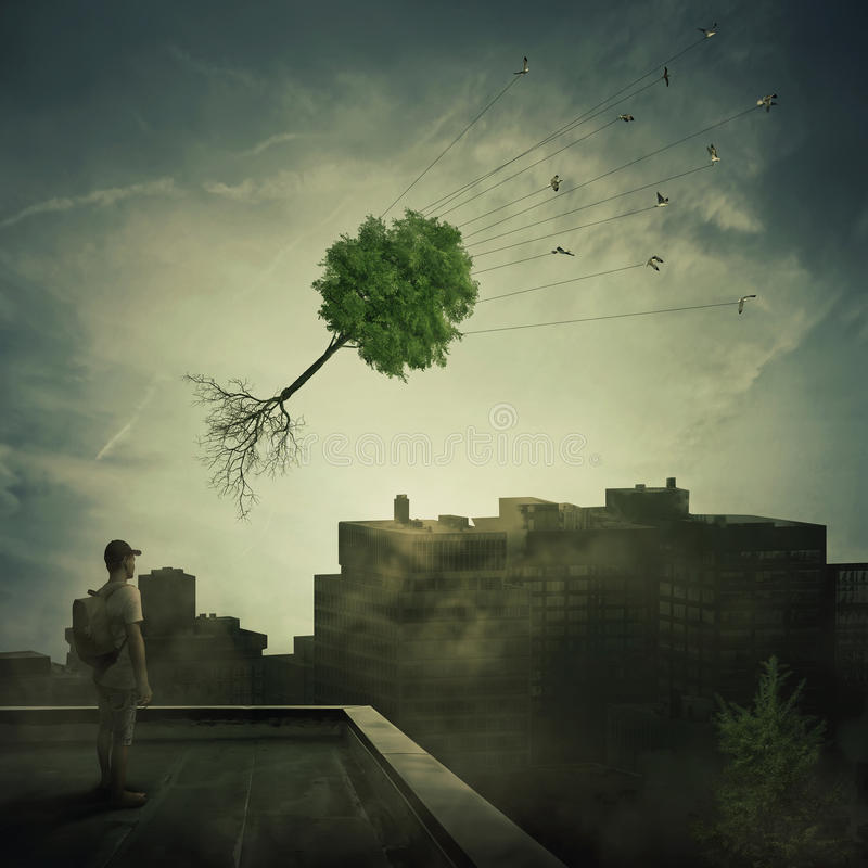 Greening of the foggy town. Surreal view as a boy stand on the rooftop looking at a flock of birds carrying a tree pulled from roots, flying over the polluted royalty free stock image