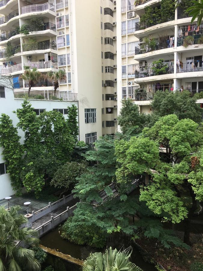 Greening of residential areas in Foshan, Guangdong, China. 。 stock photos