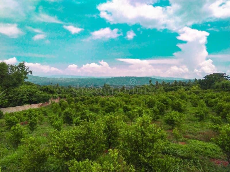 greenland foto de stock royalty free
