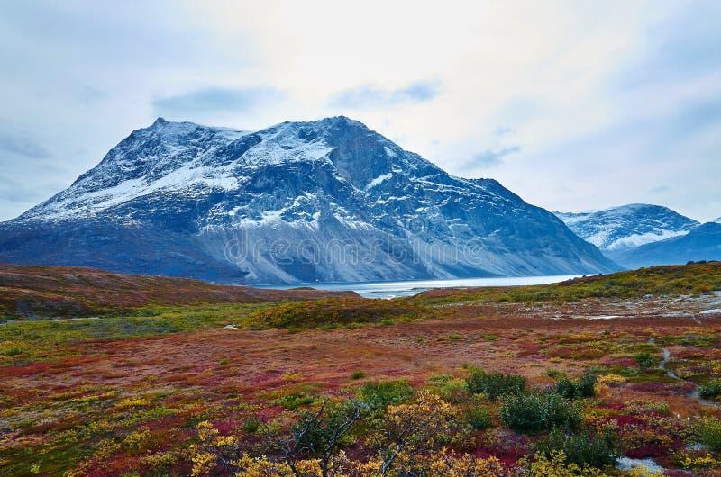 Greenland Fall royalty free stock photos