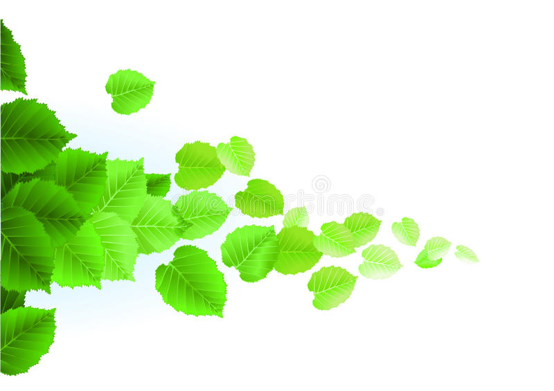greenleaves royaltyfri illustrationer