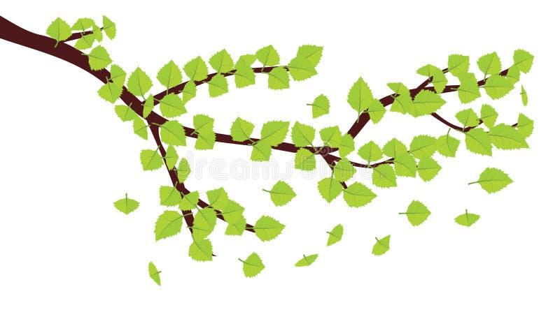 Greenleaves På Frunch Arkivfoto