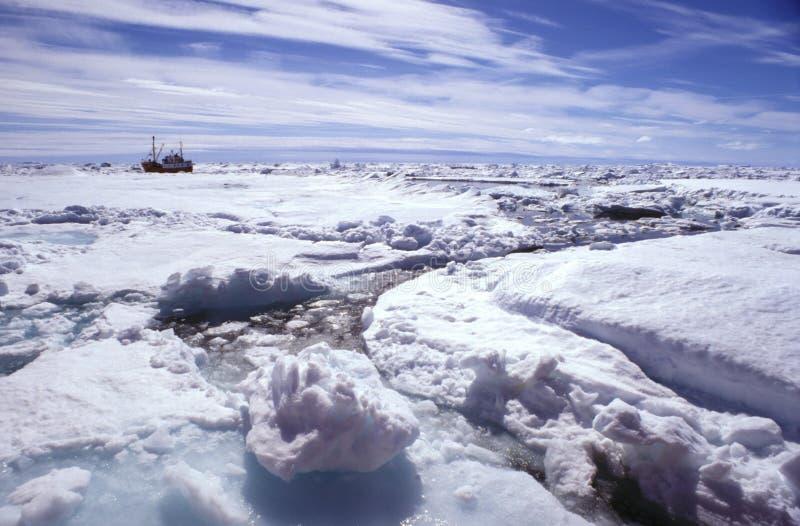 Greenlnd de la masa de hielo flotante de hielo fotografía de archivo