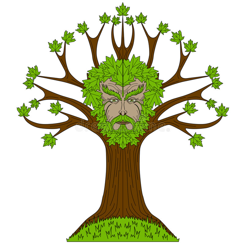 greenman δέντρο σφενδάμνου απεικόνιση αποθεμάτων