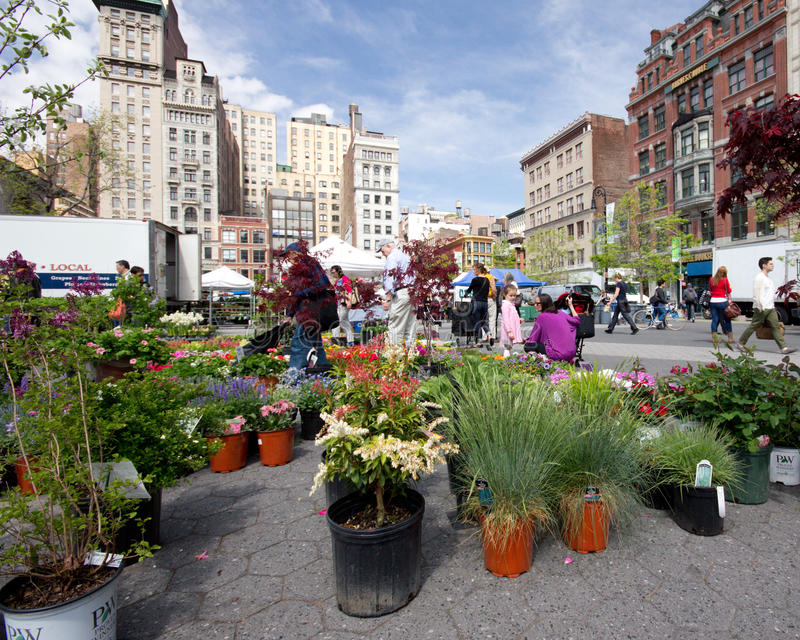 Greenmarket NYC. NEW YORK CITY - APR. 20: Spring plant sale at Union Square Greenmarket in NYC on Apr 20, 2012. This world famous farmers' market began in 1976 stock image