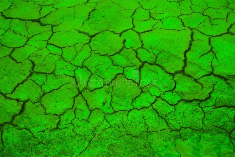 Greenpeace royalty-vrije stock fotografie