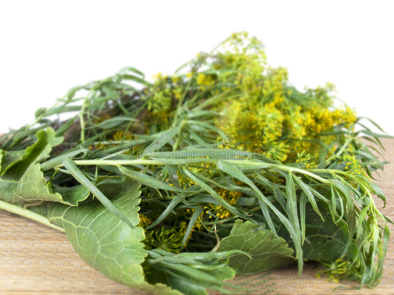 Greens For Ferment Of Products Royalty Free Stock Images