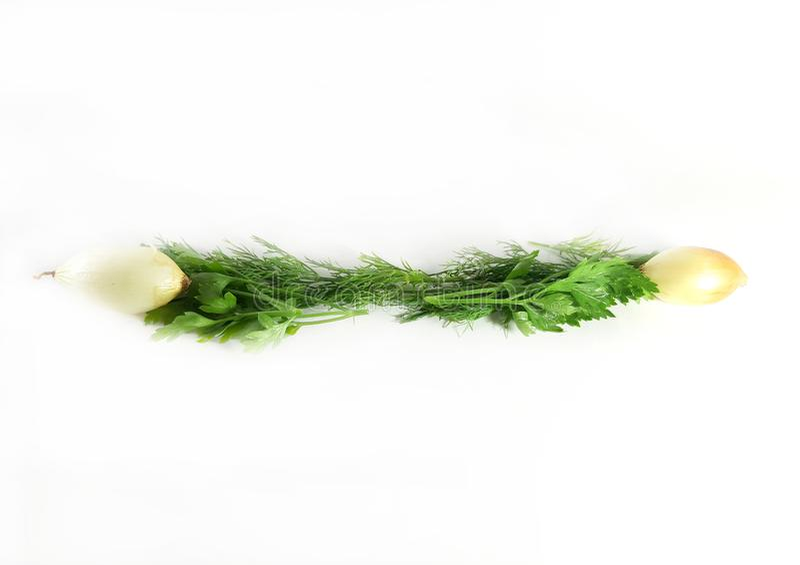 Greens grens, ecologie, voedsel, dille Geïsoleerde groene lijn voor ontwerp, witte achtergrond stock afbeeldingen