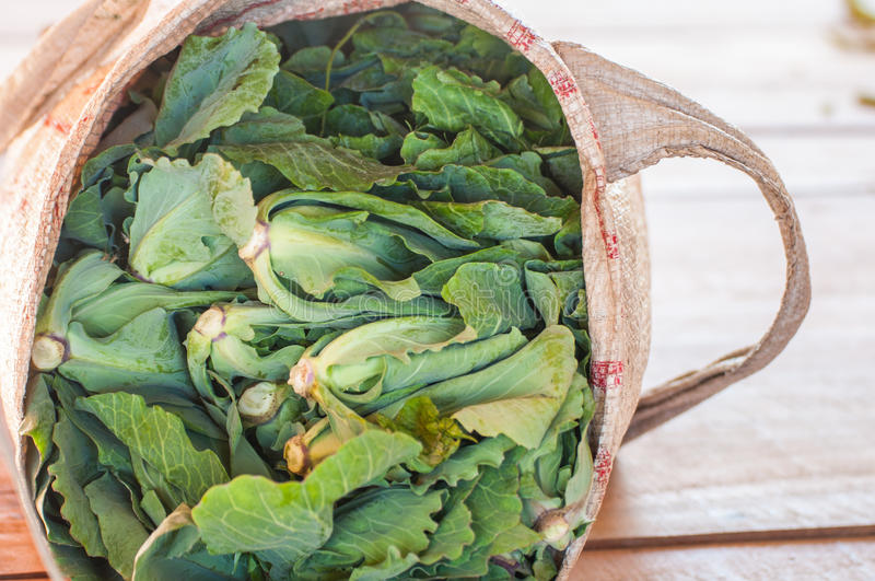 Greeny vegetable in sack royalty free stock image