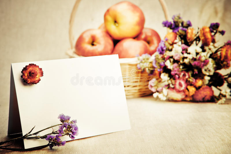 Download Greeting card stock photo. Image of heap, lilac, blank - 19937466