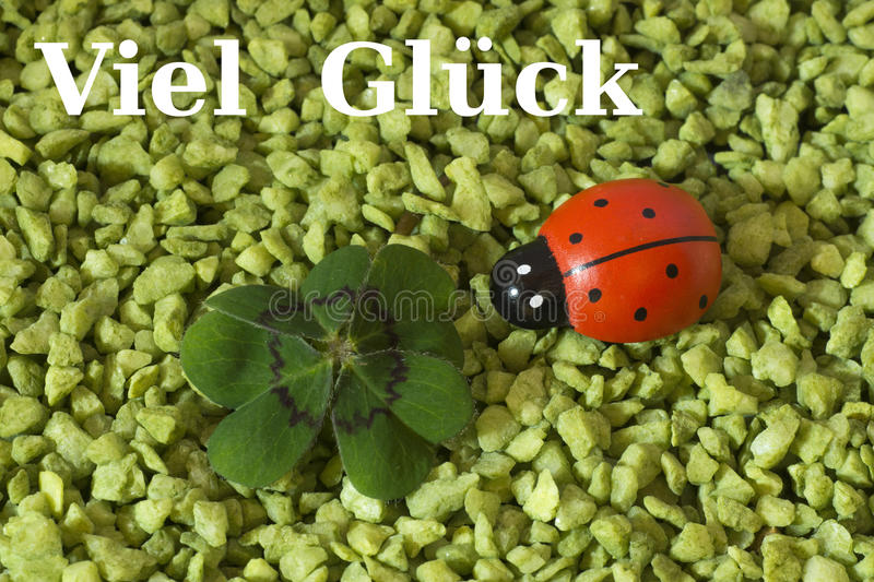 Greeting Card, Cloverleaf and ladybird royalty free stock photography
