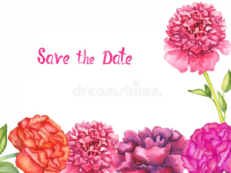 Greeting card design, bottom line and separate flower of pink and purple peonies flowers, isolated Save the Date inscription. On white background, hand painted vector illustration