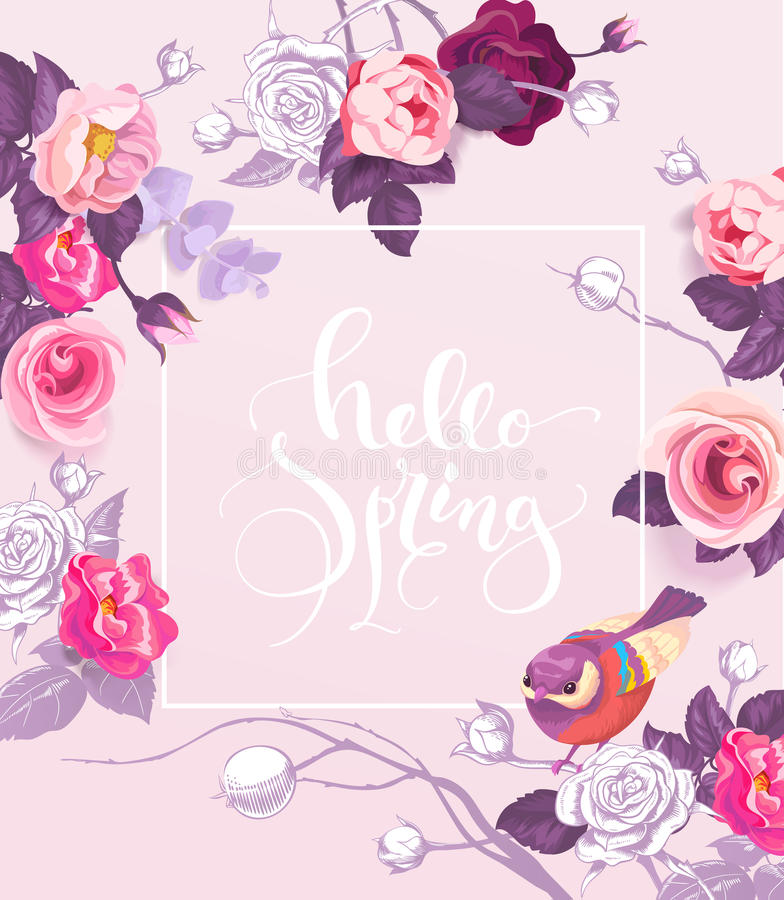 Greeting card with elegant hand written lettering Hello Spring royalty free illustration