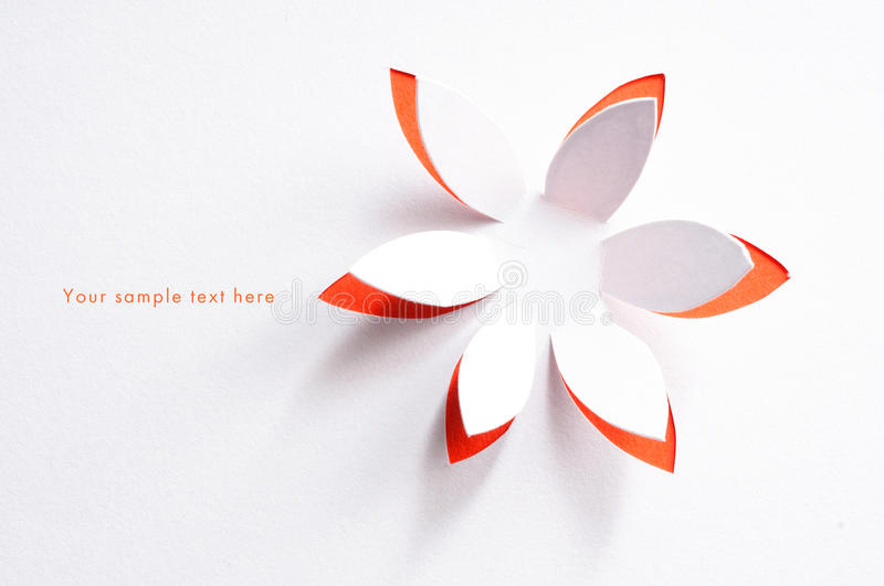 Greeting card with paper flower. Greeting card with white paper flower royalty free stock photography