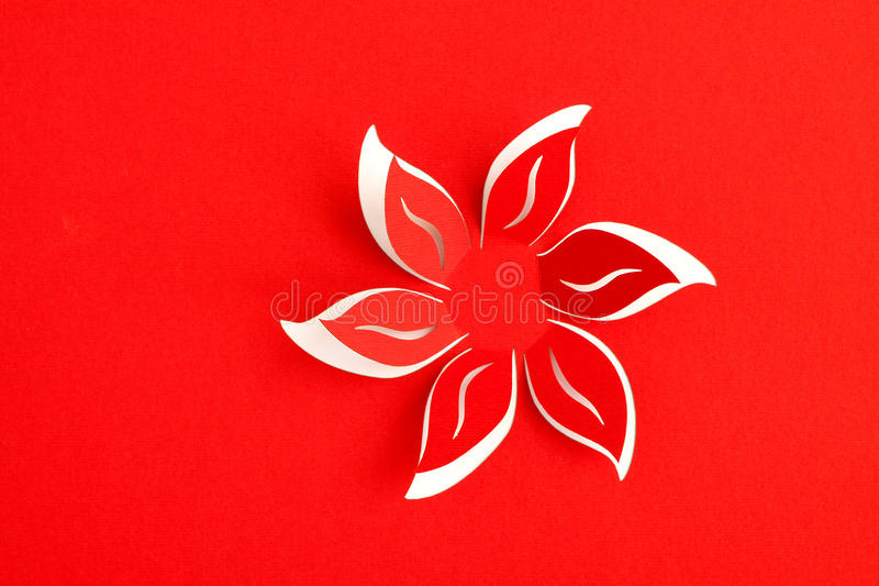 Greeting card with paper flower. On red background stock photography