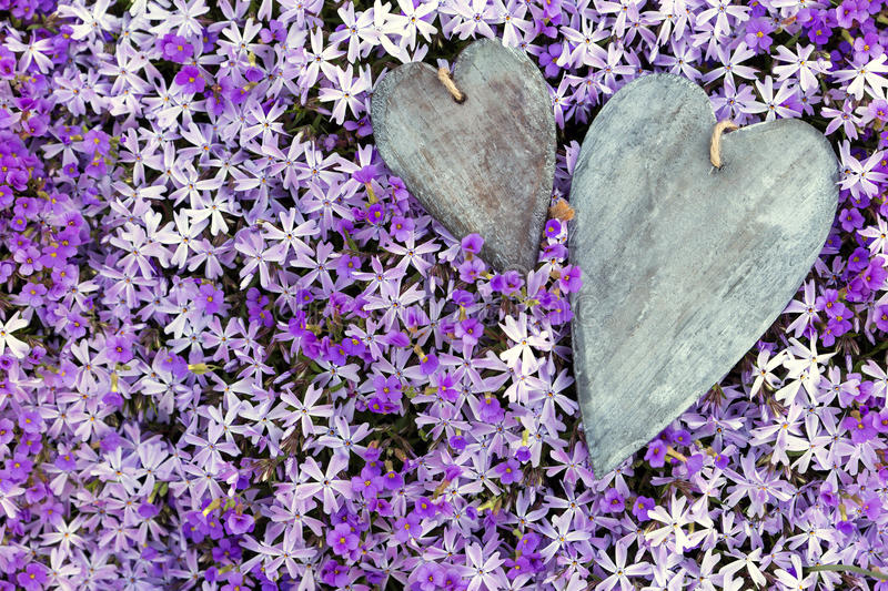 Greeting card two wooden hearts atop a lot of flowers royalty free stock photos