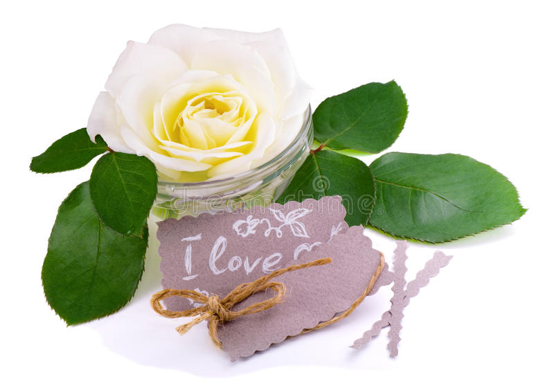 Greeting card with white rose.Love message