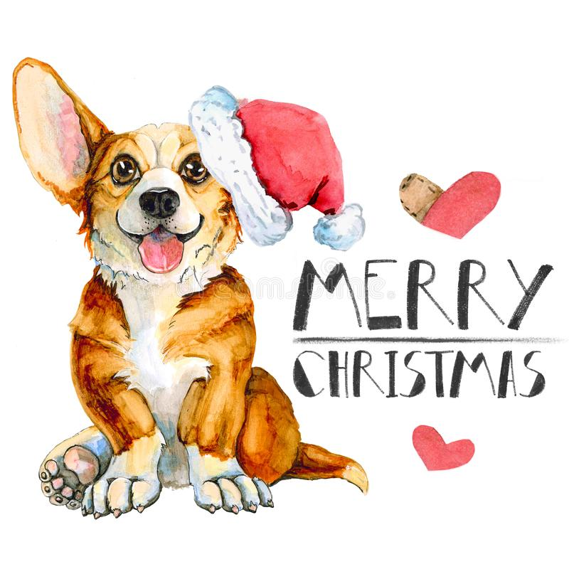 Greeting christmas card with dog breed corgi. Isolated on white background. Happy New Year stock illustration