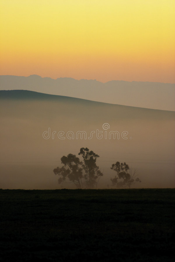 Greeting the Dawn royalty free stock photography