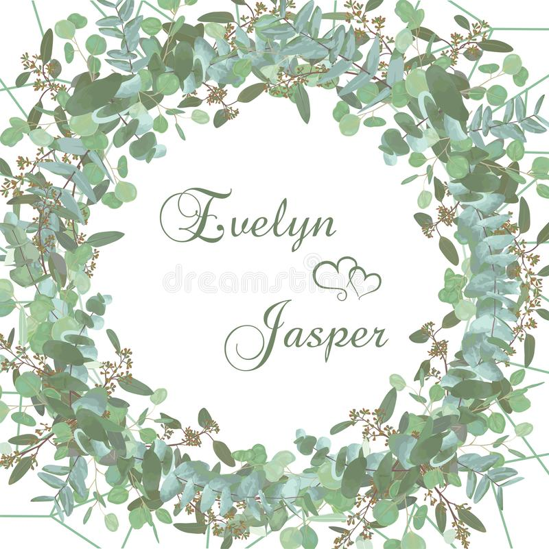Greeting festive flyer, holiday card, vector. Elegant floral, greenery, collection design. Bouquet of eucalyptus hybridus Baby royalty free stock photos